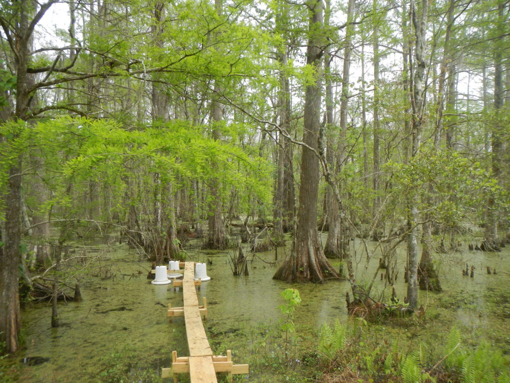 Greenhouse gas measurements taken using static gas chambers at the Luling assimilation wetlands