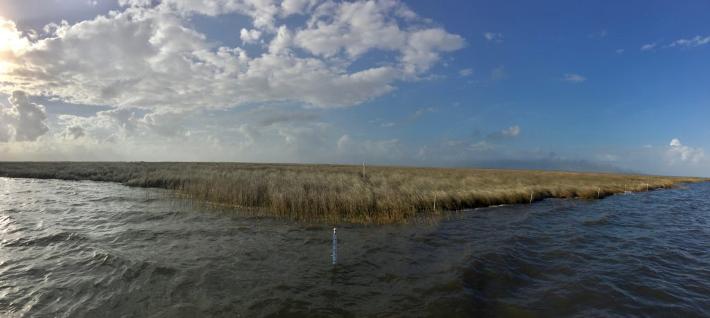 Water level gauge and site markers at the Biloxi marshes