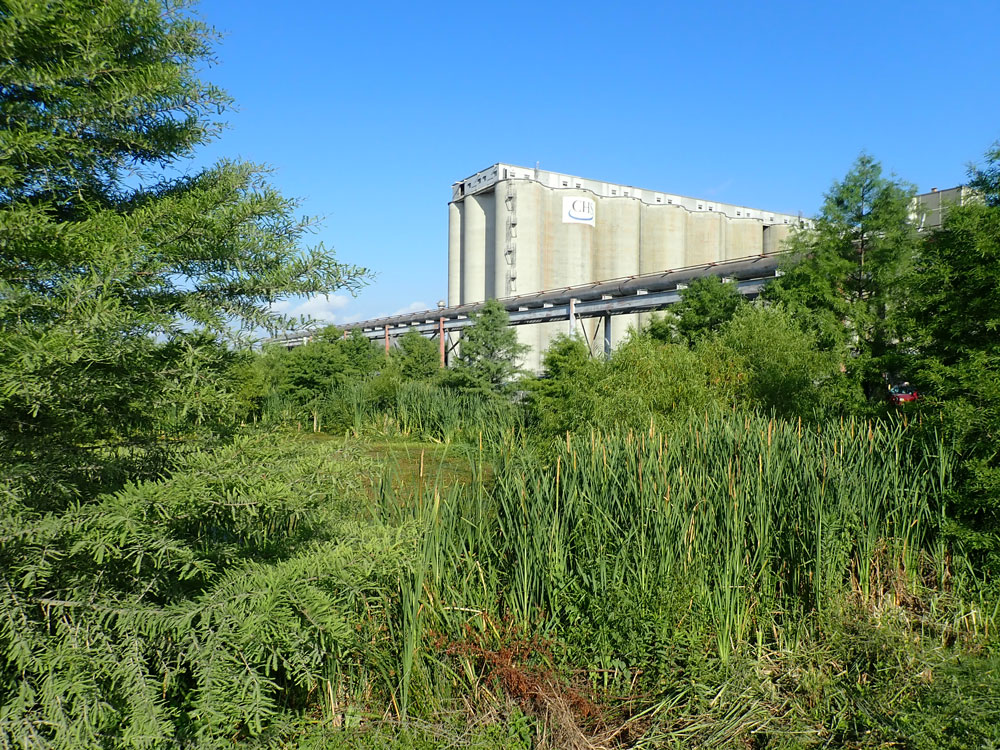 The south pond stormwater wetlands at CHS, inc.